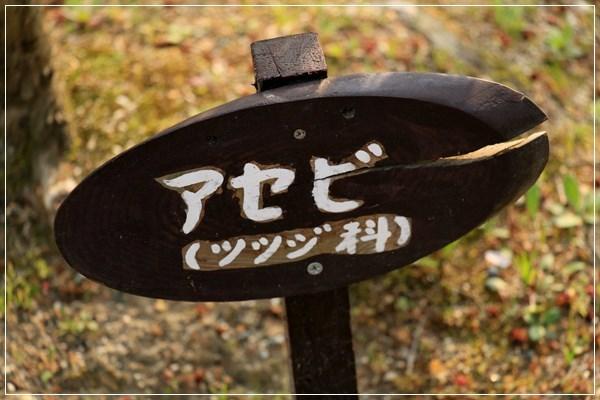 12IMG_9812.JPG
