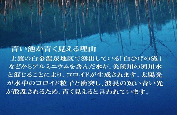 24IMG_5860.JPG